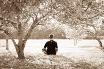 yogalow