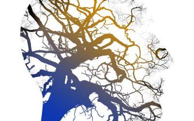 Comment faire la différence entre une réponse intuitive et une réponse qui vient de notre mental ?